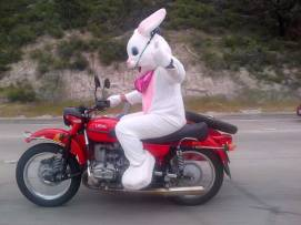 Easter Bunny Rider